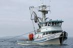 Ngư dân Mỹ đang mất chục triệu USD vì trừng phạt Nga