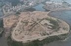 """Quảng Ninh: Hàng chục hecta rừng ngập mặn bị san lấp nhưng   chủ đầu tư vẫn """"bí ẩn"""""""