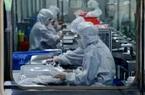 Dịch virus corona giảm nhiệt, Chính quyền Tập Cận Bình nỗ lực phục hồi nền kinh tế tê liệt