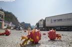 Chính thức thông quan cửa khẩu Hữu Nghị giải cứu nông sản
