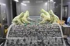 Hoa Kỳ điều tra lẩn tránh thuế với tôm xuất khẩu của Thủy sản Minh Phú