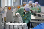 Thượng Hải hỗ trợ doanh nghiệp phòng chống dịch bệnh do virus Corona