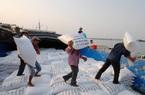 Lượng gạo xuất sang Trung Quốc trong năm nay có thể gấp đôi năm ngoái