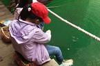 Đến vịnh Uy Phong trải nghiệm kiểu mát-xa cá có một không hai