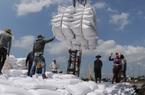 Thanh tra công tác xuất khẩu gạo