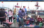 Ngư dân Thanh Hóa lao đao vì giá hải sản giảm mạnh