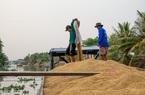 Kiến nghị cho xuất khẩu 400 nghìn tấn gạo trong tháng 4