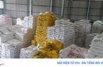 Vụ mua gạo dự trữ quốc gia: Đang làm rõ có hay không việc thông đồng, móc ngoặc?