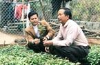 """Lạng Sơn: Kiếm bộn tiền nhờ ghép cây đào chuông quý hiếm ra hoa đẹp, """"độc"""", lạ."""