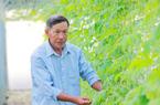 """Quảng Bình: Bố làm ruộng cả đời vẫn phải """"học"""" trồng rau từ con trai"""