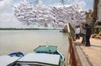 Xuất khẩu gạo: 39 doanh nghiệp chỉ gom được 70%