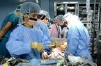 Vì sao không lấy phổi người sống cho 'bệnh nhân 91'?