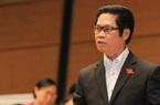 TS. Vũ Tiến Lộc: Ở Việt Nam đang tồn tại một nghịch lý trong cơ cấu doanh nghiệp