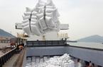 Giá gạo xuất khẩu của Việt Nam tăng 6,3%