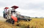 Nghị quyết miễn thuế sử dụng đất nông nghiệp được thông qua, nông dân tiết kiệm 7.000 tỷ