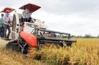 Nghị quyết miễn thuế sử dụng đất nông nghiệp được thông qua
