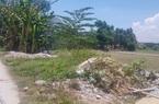 Quảng Nam: Phó Chủ tịch Tam Kỳ cho phép chuyển đổi mục đích đất rồi ký thu hồi