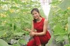 """Bắc Ninh: Nữ giám đốc trồng dưa """"siêu"""" năng suất, bán thẳng vào siêu thị"""