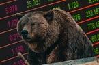 Thị trường chứng khoán giảm điểm, nhà đầu tư thường bỏ tiền vào đâu?