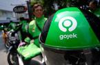 Ứng dụng gọi xe Gojek chuẩn bị sa thải hàng loạt nhân viên do ảnh hưởng của dịch Covid-19