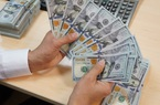 Tỷ giá ngoại tệ hôm nay 28/6 đồng USD ổn định