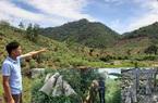 """Phú Thọ: """"Tàn sát"""" rừng phòng hộ và hơn 1.000ha rừng """"biến mất"""""""
