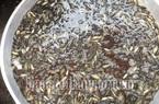 Sóc Trăng: Đáng ngại, lưới vét kênh rạch bắt sạch cá non, cá rô ron mang chợ bán 100 ngàn/ký