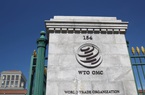 WTO chọn nhà lãnh đạo mới, Mỹ - Trung lại đối đầu