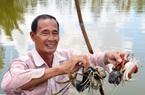 Cà Mau đề xuất 2 sản phẩm vào Top đặc sản Việt Nam 2020