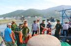 Kiểm soát chặt tàu cá, tăng cường xử lý tàu vi phạm, quyết gỡ thẻ vàng IUU