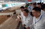 """Ra mắt dự án 700 tỷ hiện thực hóa """"kinh tế tuần hoàn trong nông nghiệp"""""""