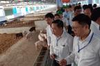 Chủ tịch TT-Huế yêu cầu kịp thời hỗ trợ người dân, doanh nghiệp khó khăn do dịch Covid-19