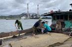 Khởi tố vụ 3 tàu hút cát trái phép trên vịnh Bái Tử Long