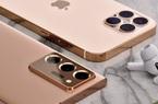 iPhone 12 vs Samsung Galaxy Note 20: Chiếc điện thoại nào là dành cho bạn?