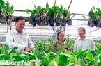 Đồng Nai có thêm 3 xã nông thôn mới nâng cao