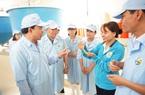 Dự án nuôi tôm công nghệ cao ở Quảng Ninh: Sản xuất 1 tỷ con giống trong năm 2020