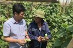 Dạy nghề lao động nông thôn bị gián đoạn do Covid-19: Thay đổi kế hoạch và tăng tốc đào tạo