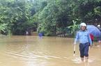 230ha lúa của tỉnh Tuyên Quang bị ngập úng vì mưa lớn