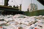 Kim ngạch xuất khẩu gạo tăng gần 11%