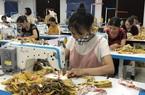 Dịch Covid-19: Hơn 1,2 triệu lao động mất việc, gấp rút đào tạo lại lao động nông thôn
