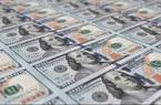 Tỷ giá ngoại tệ hôm nay 18/8 đồng USD tiếp tục giảm sâu