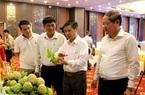 Lạng Sơn: Kết nối tiêu thụ sản phẩm Na Chi Lăng và các sản phẩm OCOP