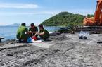 Đà Nẵng: Xử phạt 700 triệu đồng doanh nghiệp đổ chất thải xuống biển