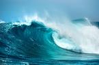 Có nên tìm kiếm cơ hội theo sóng thoái vốn nhà nước?