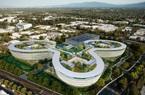 Kỹ sư Trung Quốc mất việc tại Thung lũng Silicon do ảnh hưởng của dịch Covid-19