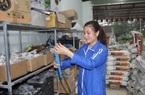 Nữ nông dân xứ Thanh mê nông nghiệp công nghệ cao