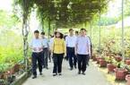Hà Nội 5 huyện lên quận: Đô thị hóa nông thôn, Thủ đô đang đi đúng hướng