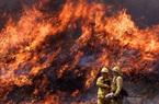 """""""Hỏa ngục"""" cháy rừng tàn phá Bờ Tây nước Mỹ, hàng chục người chết"""