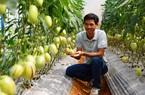Nông nghiệp thông minh 4.0: Kinh nghiệm từ Lâm Đồng
