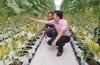Bỏ nghề báo, chàng trai Hà Nội về quê lập HTX bỏ 3 tỷ  trồng dưa lưới, mỗi năm thu hơn 2,1 tỷ đồng